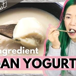 ONE INGREDIENT VEGAN YOGURT.... Does It Work?! (Cook With Me)